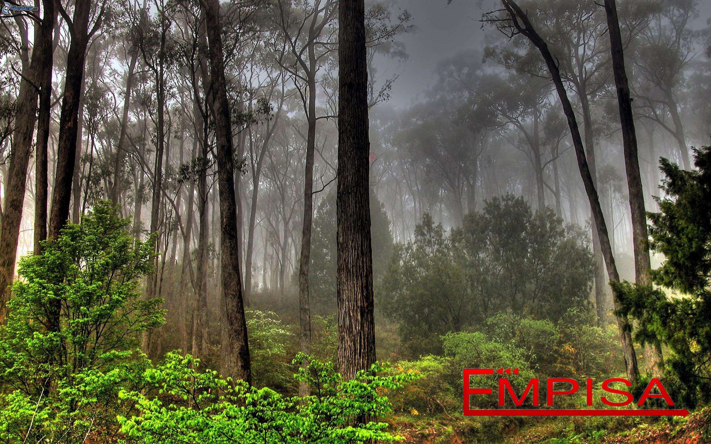 empisa_embalajes_medioambiente